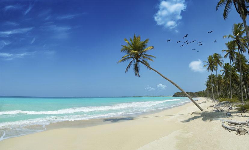 TROPICAL BEACH06.jpg
