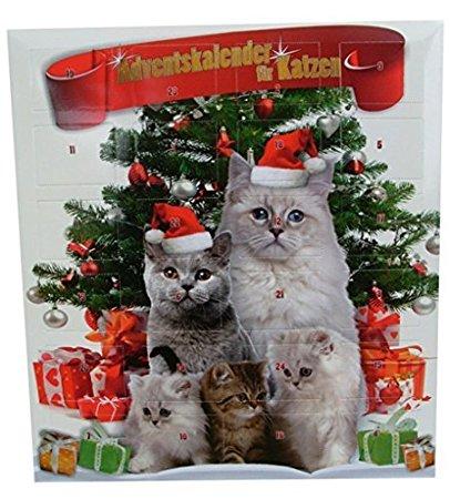 calendario avvento gatti.jpg