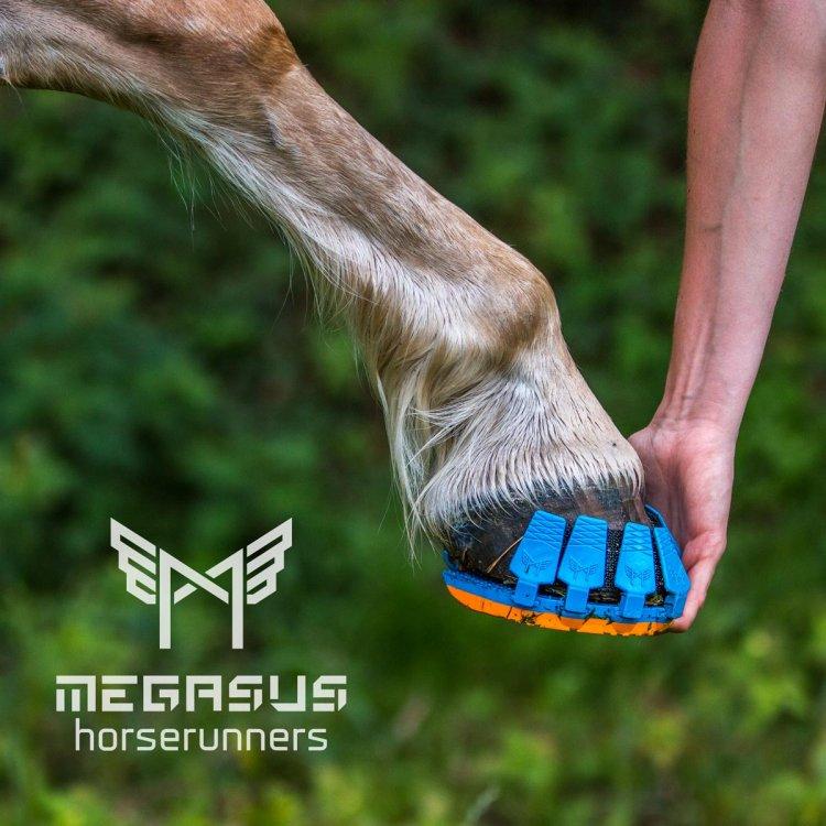 Megasus-Horserunners-Cover-1.jpg