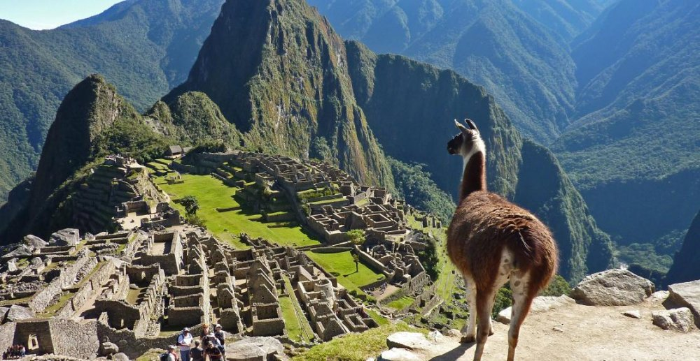 Charity-Trek-to-Machu-Picchu5_1.jpg