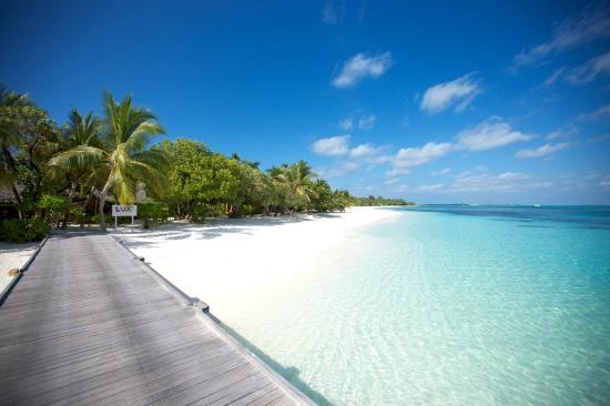 lux-maldives.jpeg