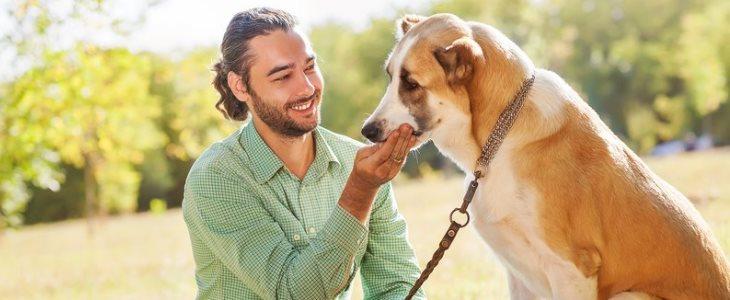 parlare-con-cane.jpg
