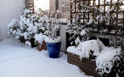 terrazzo.neve.JPG