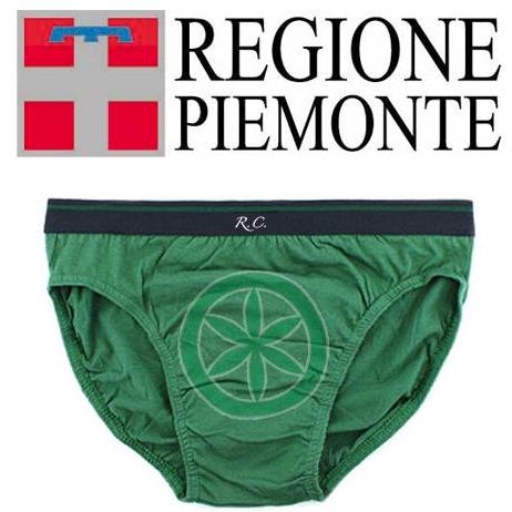 regione piemonte uso.png