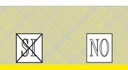 quesito-n2 (3).jpg